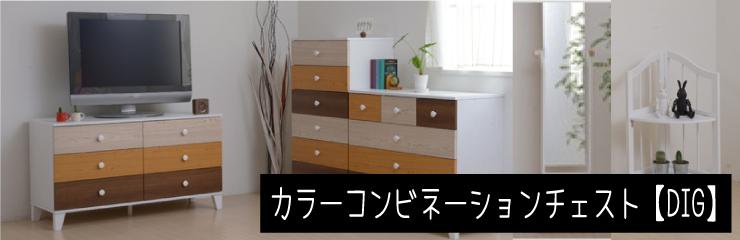洋服収納 カラーコンビネーションチェスト【DIG】